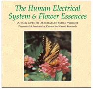 DVD: The Human Electrical System And Flower Essences; 2 discs